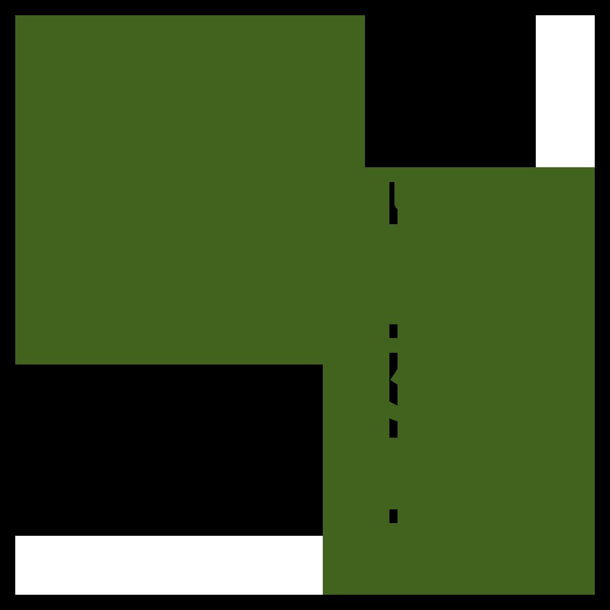 vitamin injection icon